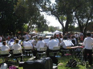 Orange Grove Markets Performance